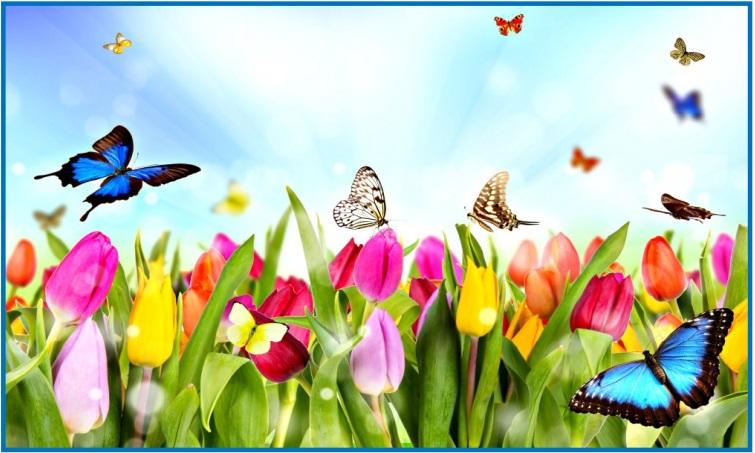 Botev-spring-1-1